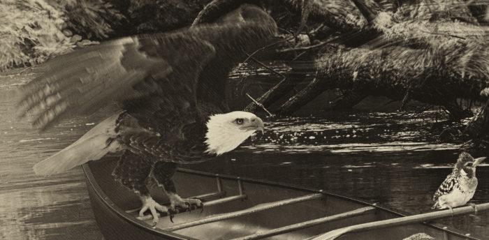 calling the spirits_detail_eagle