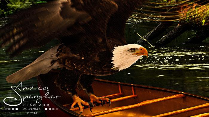 calling_detail_eagle_color